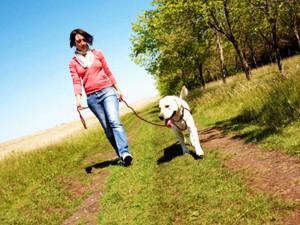 foto_sito_dog_walking