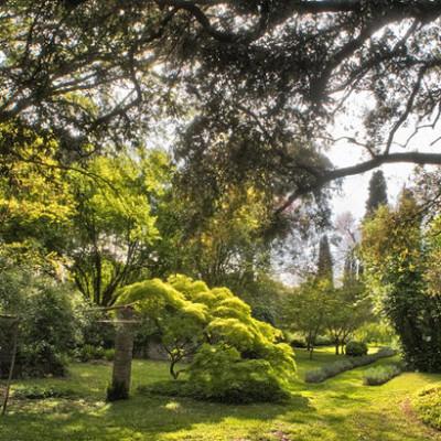 Giardino di ninfa pantanello for Giardino di ninfa orari